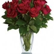 Classic Dozen Red Roses $74.95